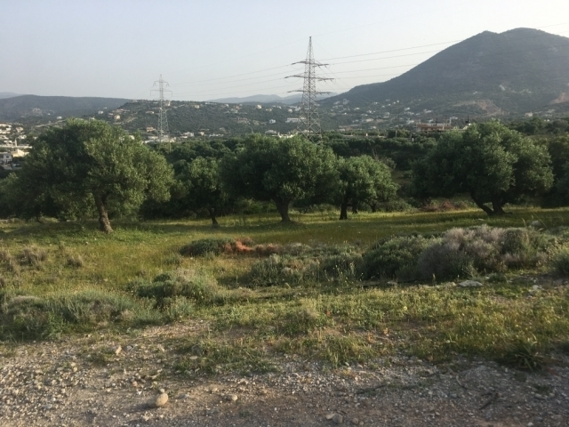 Building land plot of 5.650m2 for sale in Agios Nikolaos
