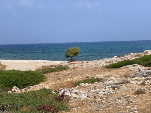 Land plot of 5.746m2 for sale in Milatos