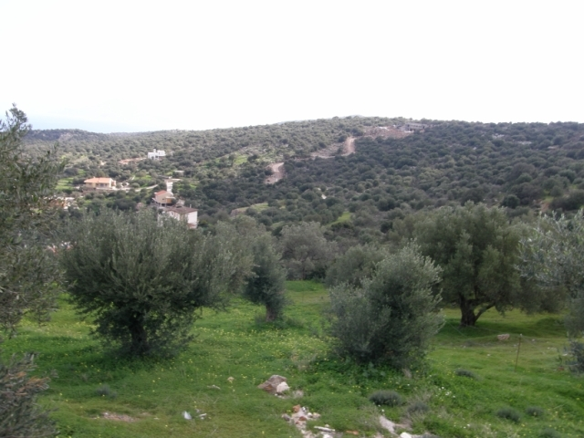Land of 2,197m2 in the area of Mardati, Aghios Nikolaos for sale